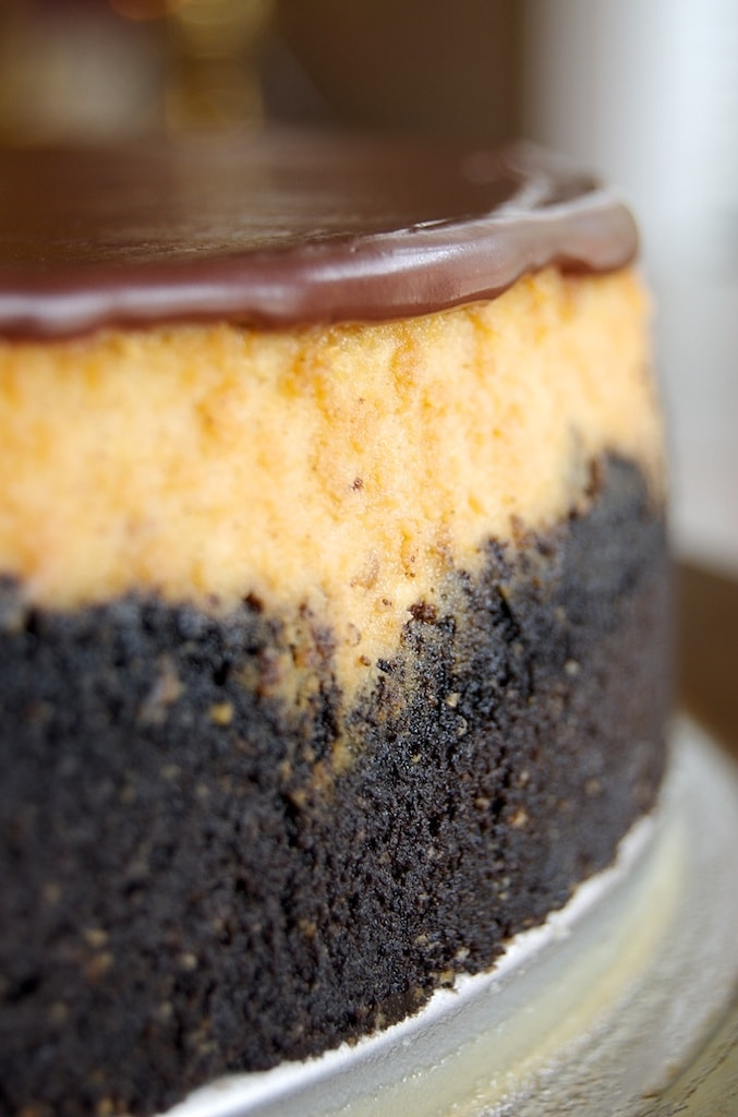 close up view of Peanut Butter Cup Cheesecake