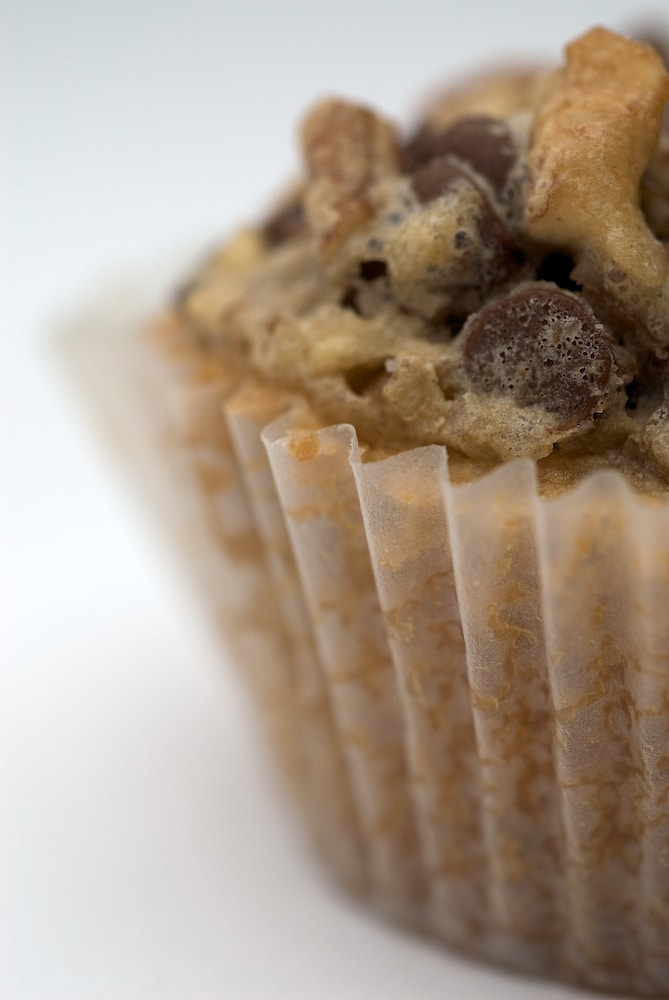 Chocolate Chip Cupcakes are a great cupcake-cookie hybrid. Topped with chocolate and nuts, these little bites of deliciousness are sure to please! - Bake or Break