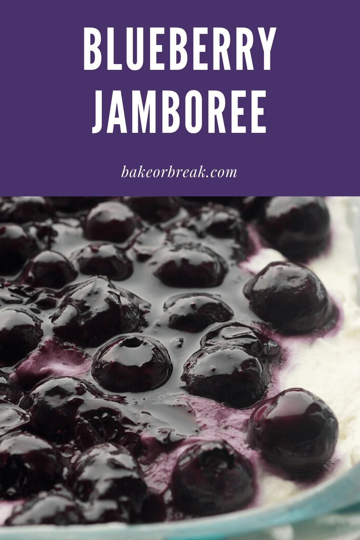 Blueberry Jamboree bakeorbreak.com