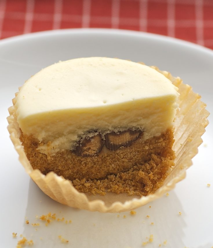 Peanut Butter Cheesecake Minis