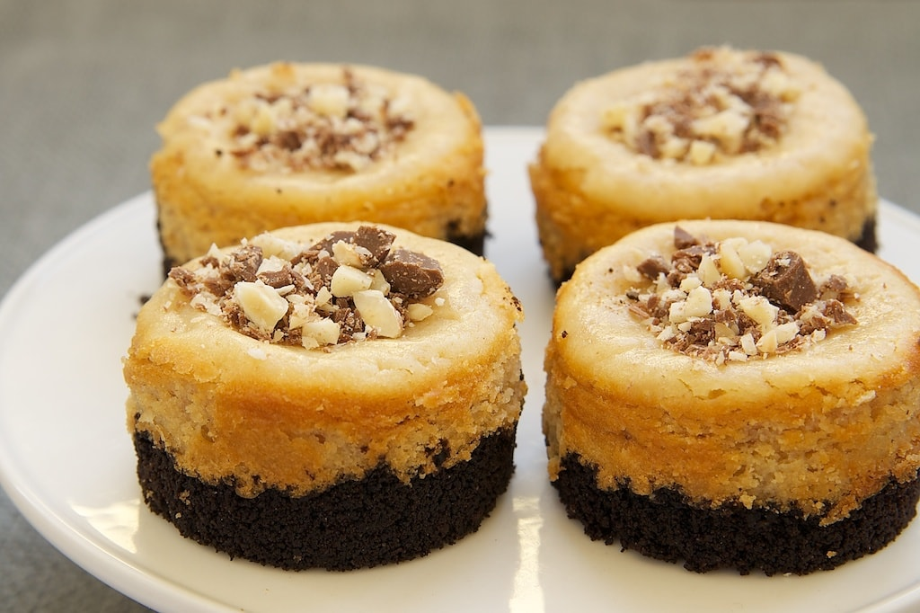 Peanut Butter Mini Cheesecakes with Chocolate Cookie Crust are sweet, nutty, bite-size desserts with big chocolate and peanut butter flavor.