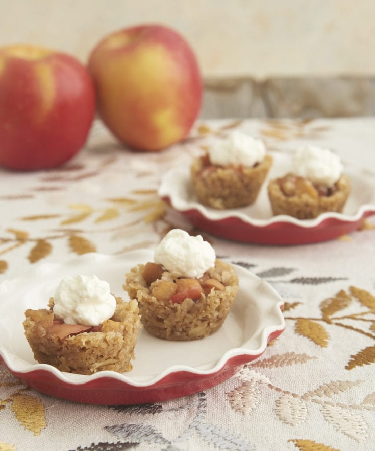 Apple Crisp Bites