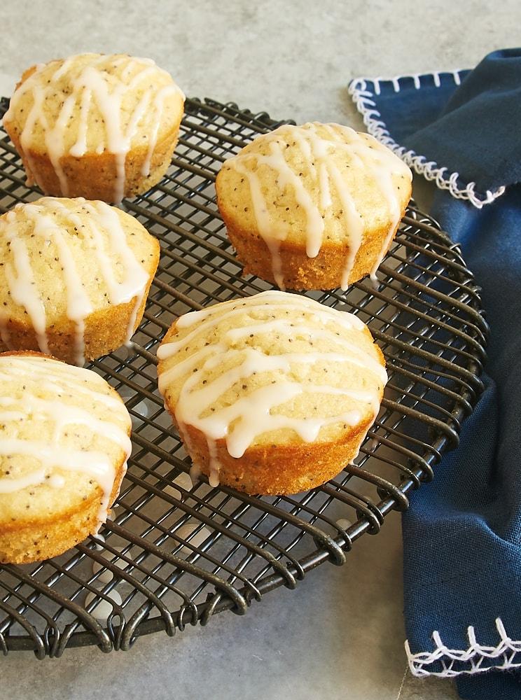 Triple Citrus Poppy Seed Muffins feature lemon, lime, and orange for plenty of citrus flavor. - Bake or Break