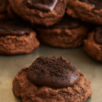Chocolate lovers will absolutely adore these wonderfully rich and delicious Chocolate Blackout Cookies! - Bake or Break