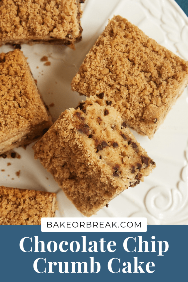 Chocolate Chip Crumb Cake bakeorbreak.com