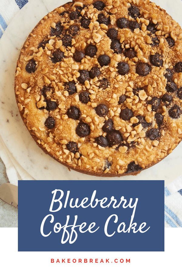 Blueberry Coffee Cake bakeorbreak.com