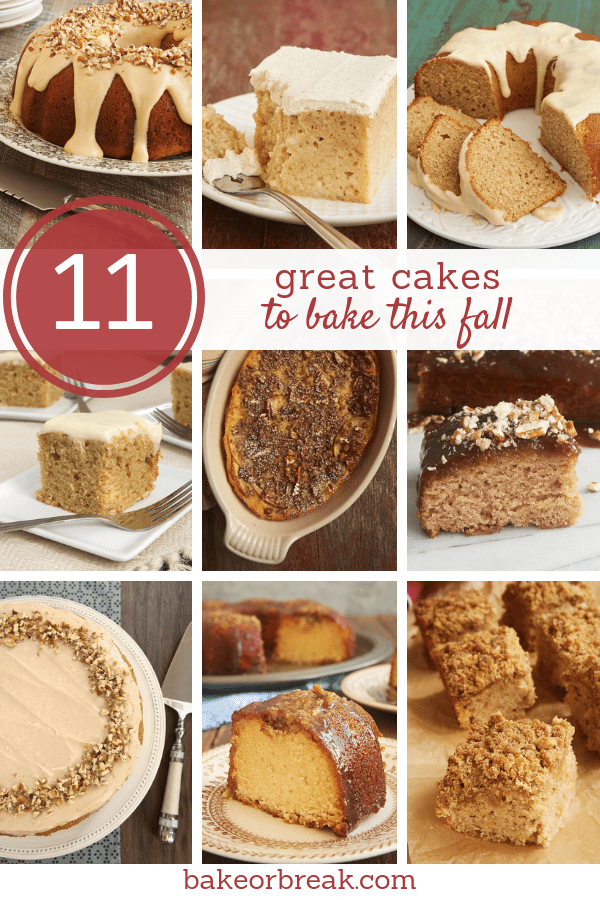 11 Great Cakes to Bake This Fall bakeorbreak.com