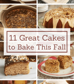Get baking this fall with 11 recipes for fantastic fall cakes! - Bake or Break