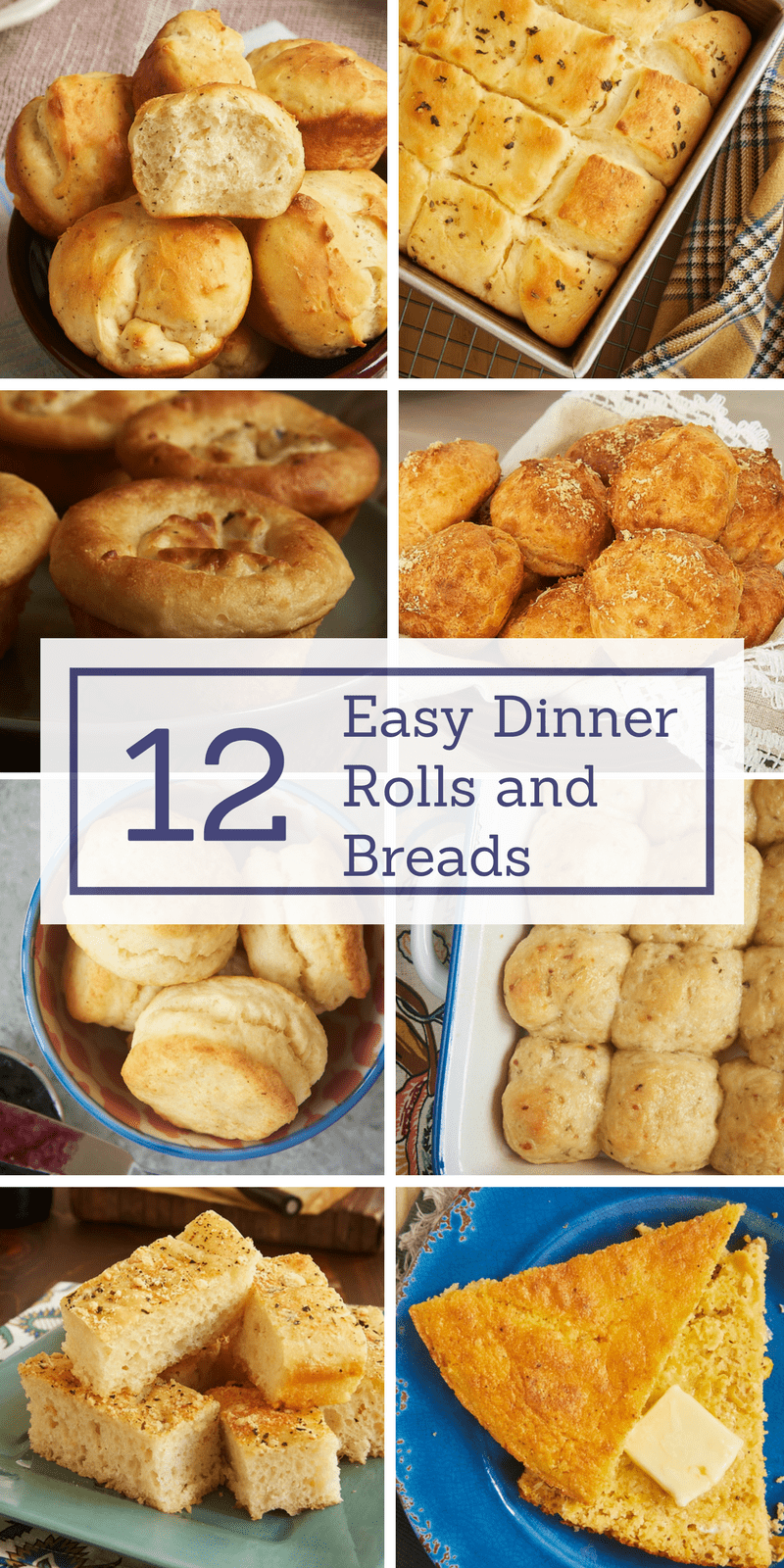 collection of dinner rolls and breads recipes