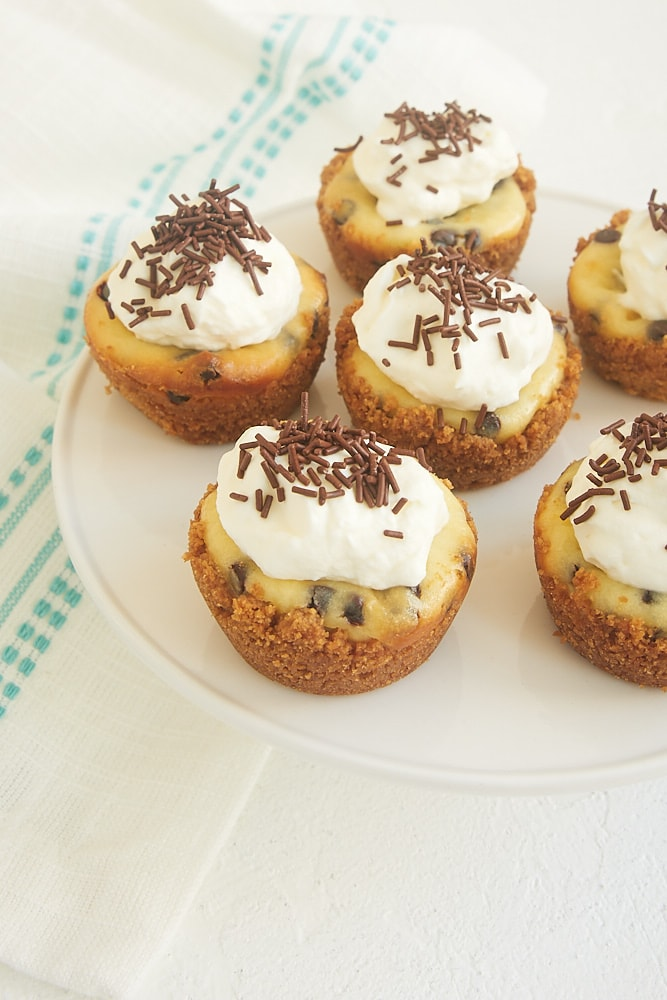 Chocolate Chip Cheesecake Bites from Bake or Break