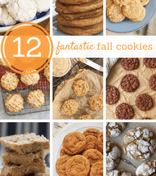 collection of fall cookies from Bake or Break