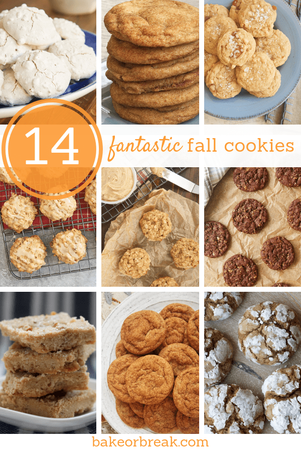 collection of fall cookie recipes