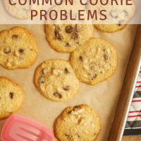 How to Prevent Common Cookie Problems bakeorbreak.com