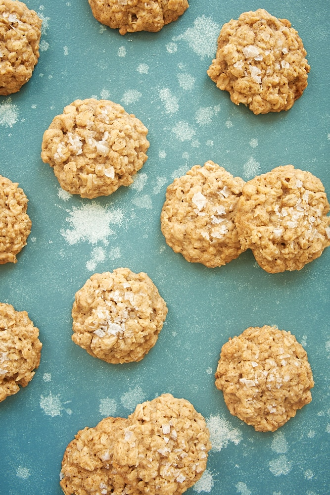 Salted Oatmeal Cookies on a blue background