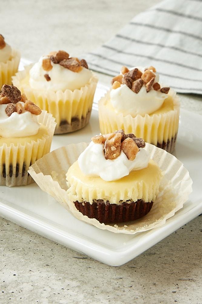 Brownie Bottom Mini Cheesecakes on a white tray