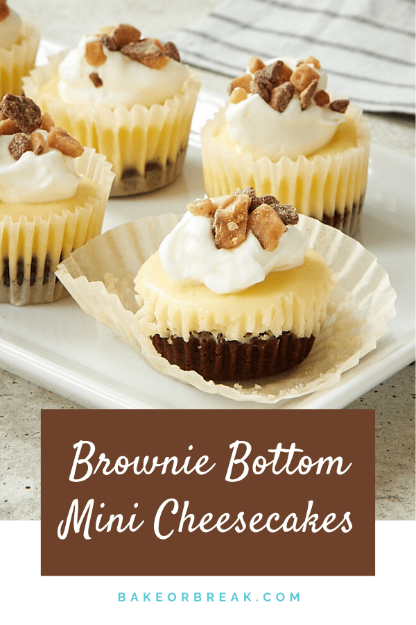 Brownie Bottom Mini Cheesecakes combine two favorite desserts into one bite-size treat. These little beauties are surprisingly easy to make and so, so good! - Bake or Break #cheesecake #brownies #minidessert #minicheesecakes