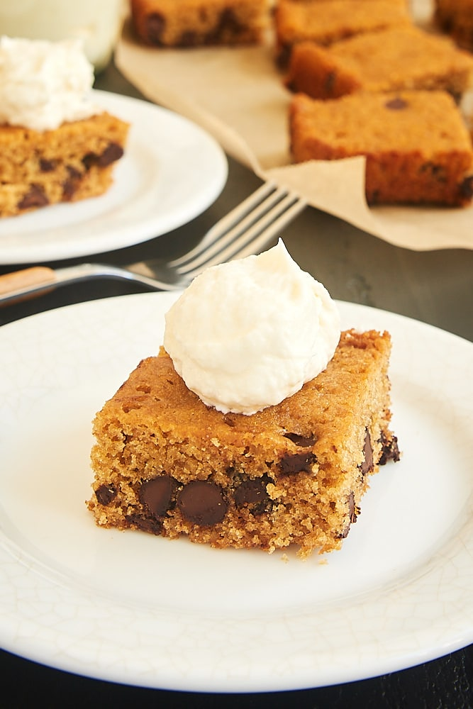 Chocolate Chip Graham Cracker Snack Cake on a white plate