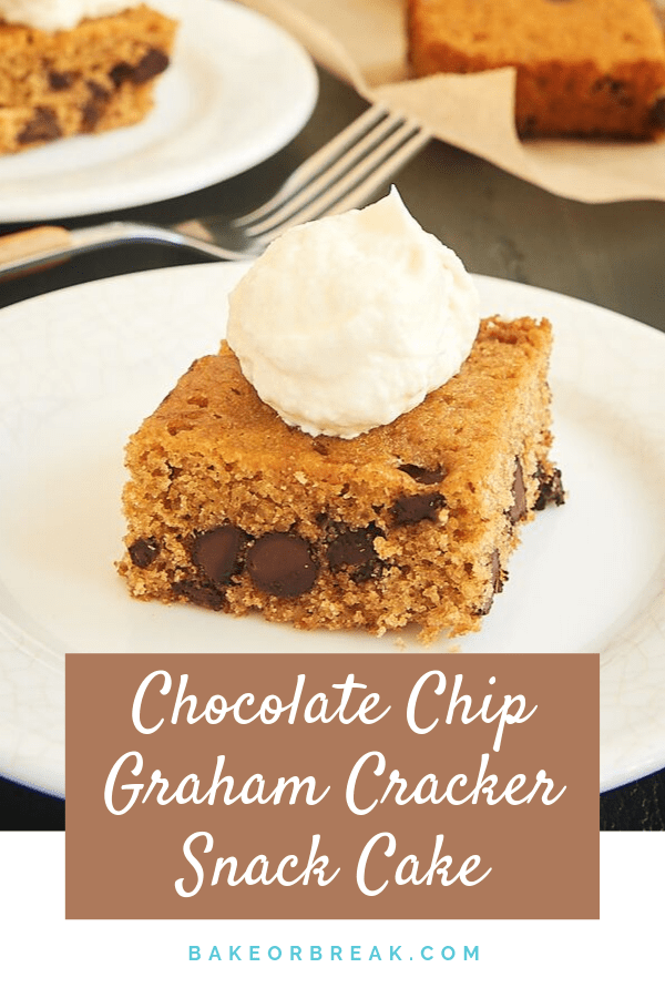 If you love the flavors of S'mores, then you must try this Chocolate Chip Graham Cracker Snack Cake. The simple cake is made with plenty of graham cracker crumbs and chocolate chips, and it is topped with a sweet marshmallow frosting. - Bake or Break #cake #snackcake #chocolatechip