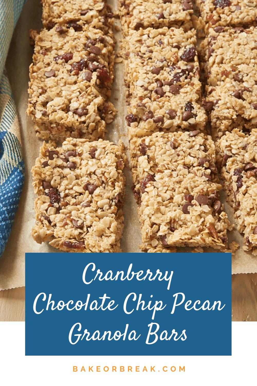 Cranberry Chocolate Chip Pecan Granola Bars