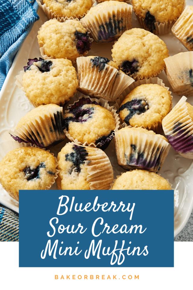 Blueberry Sour Cream Mini Muffins