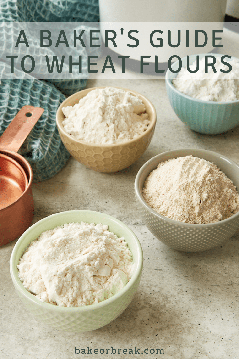 A Baker's Guide to Wheat Flours bakeorbreak.com