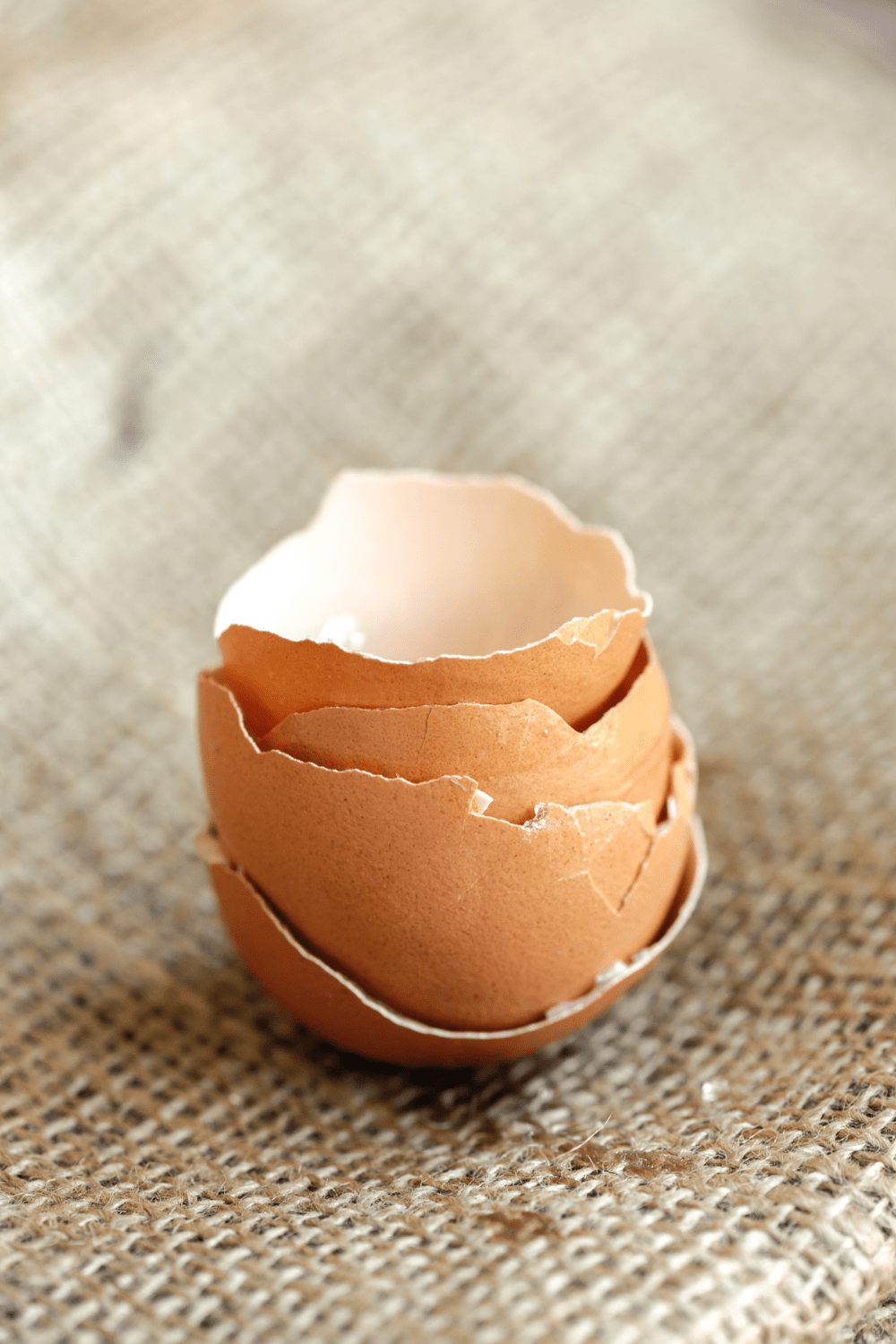 stack of broken egg shells on a beige fabric