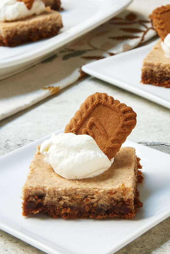 Spiced Cheesecake Bars topped with whipped cream and spiced cookies