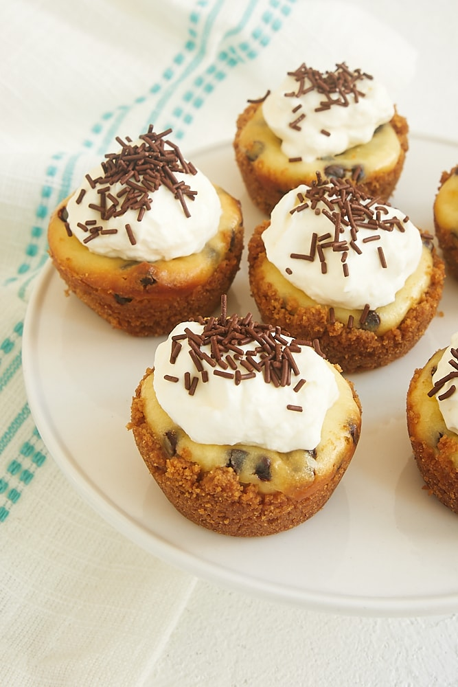 Chocolate Chip Cheesecake Bites on a small white cake pedestal