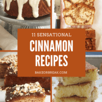 11 Sensational Cinnamon Recipes bakeorbreak.com