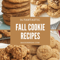 14 Fantastic Fall Cookie Recipes bakeorbreak.com